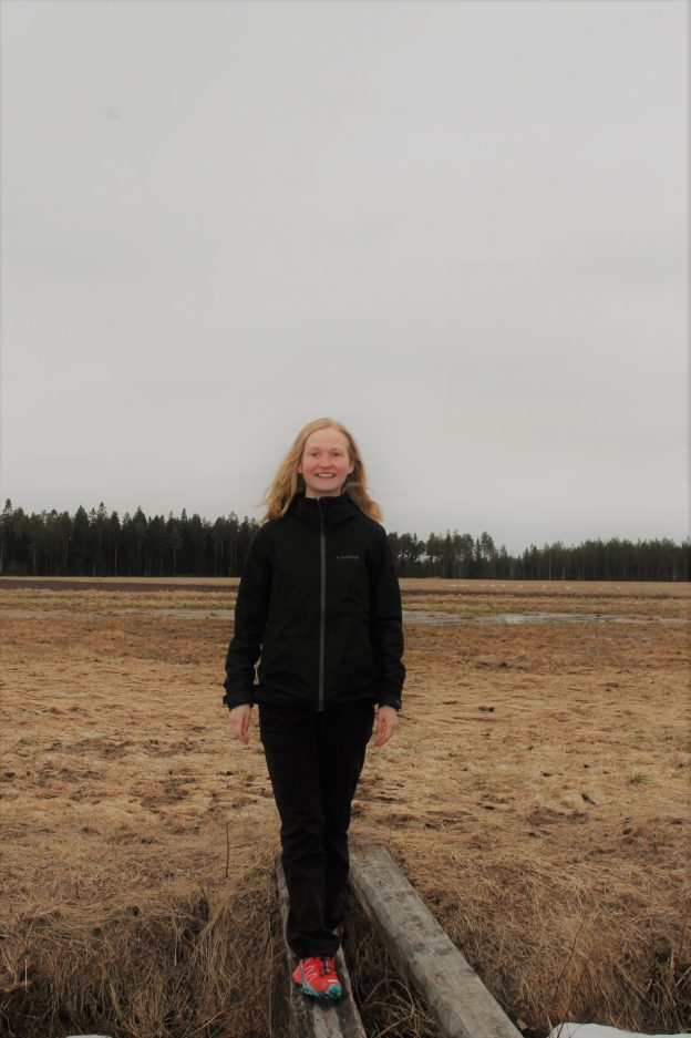 Rina Karjula, Blogi, Lännentila